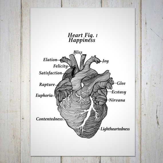 Heart Wall Art Wall Decor - Heart Anatomy - Happiness Wall Art Wall Decor - Anatomy of Happiness - Glee Euphoria Elation Joy Bliss Felicity