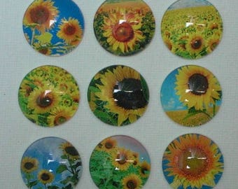 MAGNET SET SUNFLOWER Love Refrigerator Fridge Glass Cabochon Gift Under 15 Birthday Thank You Best Friend Hang Artwork! Office Magnet Board