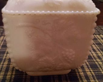 westmorland  paneled grape  square footed covered candy dish