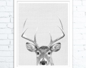 Gift, Printable Gift, Deer Print, Home Decor, Woodland Nursery, Animal Print, Deer Poster, Deer Head, Woodland Animals, Deer Antler