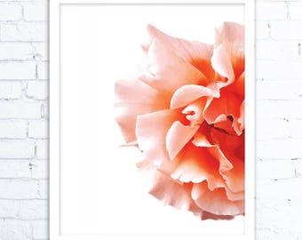 Wall Art, Flower Art, Flower Art Prints , Flower Wall Art, Digital Art Print, Art Prints, Digital Download Art, SUMMER 2017 Wall Art