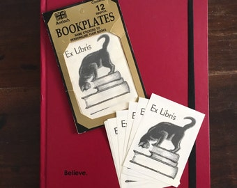 Cat on Books Name Stickers / Vintage Antioch Bookplates to Personalize Your Books / Ex Libris From the Library of Book Owner / Total of 20