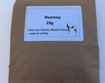 Romney Fleece - 25 grams