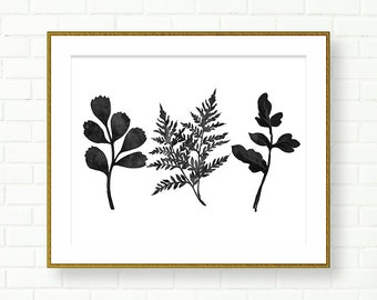 Botanical Prints, PRINTABLE, INSTANT DOWNLOAD, Fern Art Print, Poster, Black White Wall Art, Leaves, Natural History, Wall Decor, Modern Art