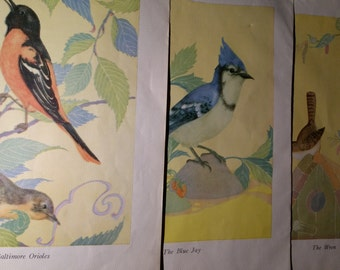 Fern Bisel Peat Bird Color Plates 1931 Lot of 3