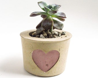Concrete planter - Succulent planter - Cement planter - Succulent pot - Cement pot - Home decor - Concrete home decor - Modern planter