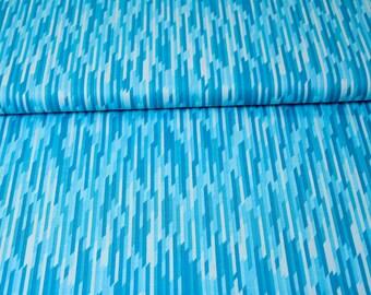 Cotton - patchwork Riley Blake desert bloom - blue desert stripe