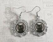 Grumpy Cat Earrings, Vintage Style Grumpy Cat Photo Earrings, Antique Silver Cat Earrings, Unique Cat Earrings