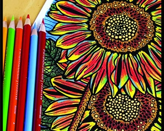 Coloring Page Printable, Sunflower, Inspired by my flower garden