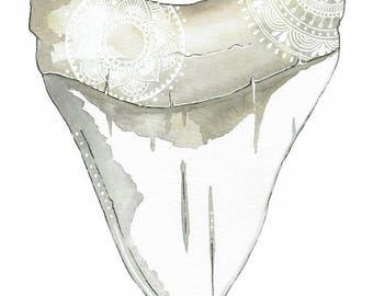 Mandala Shark tooth artwork