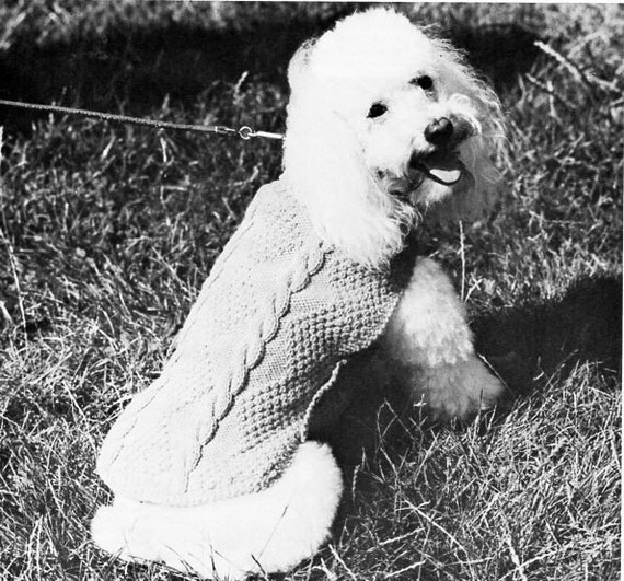 Knitting Pattern For Medium Sized Dog : medium dog coat poodle coat knitting pattern pdf dog sweater dog jumper cable...