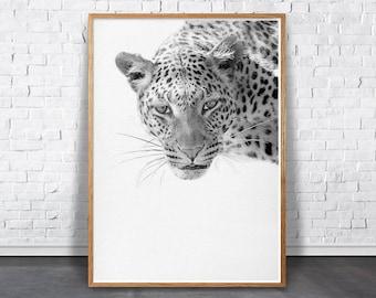 Father's Day Gift, Safari Nursery, Leopard Print, African Animal Wall Art, Printable Poster, Cheetah, Kids Room Decor, Black and White Photo