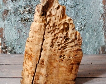 Natural tree wood piece, wooden rustic decoration, supply, centerpieces wooden crafts