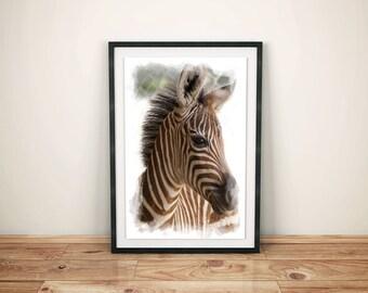 Printed Zebra Wall Art-Nursery Zebra Wall Art-Nursery Zebra Print-Nursery Baby Zebra-Printed Baby Zebra-Watercolor Zebra Wall Print