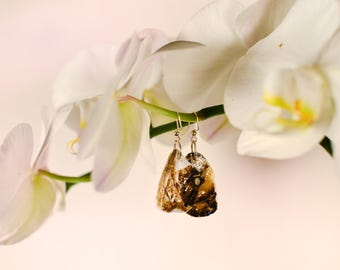 Oyster Shell Earrings
