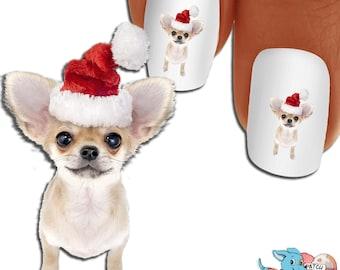 Chihuahua Anticipation in Santa Hat Nail Art - Dog Nail Decals - Waterslide Nail Decals - Chihuhuas