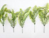 7 Fern Stems for Bouquet Filler - Wreath Filler, Arrangement Filler - ITEM 0998