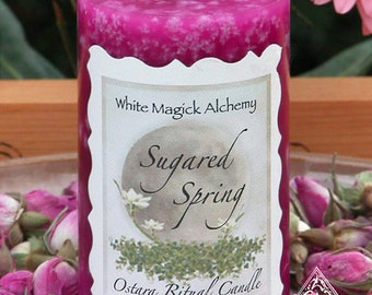 Sugared Spring Ostara Pink Sugar Candle 2x3 Pillar