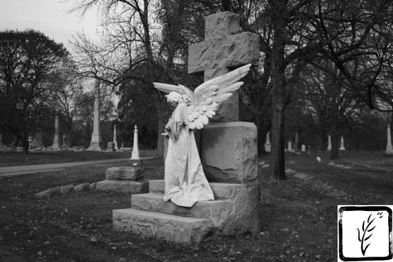 Black and White Photograph, art photography, fine art, photo print, wall art, home decor, angel wings, angel, cemetery, graveyard