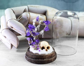 Skull Dried Flowers and Snow in a Bell Jar - Glass Miniature - Vanitas - Still Life - Winter - 2.75 x 1.73 inches / 7 x 4,4 cm
