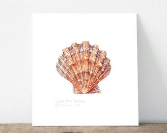Lion's Paw Scallop Seashell Original Watercolor Painting