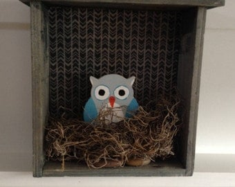 Owl Nest Box