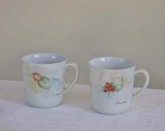 Pair of Hand Painted Coffee Cups, Arzberg Germany China Fruit Motif German Mug, Signed Porcelain