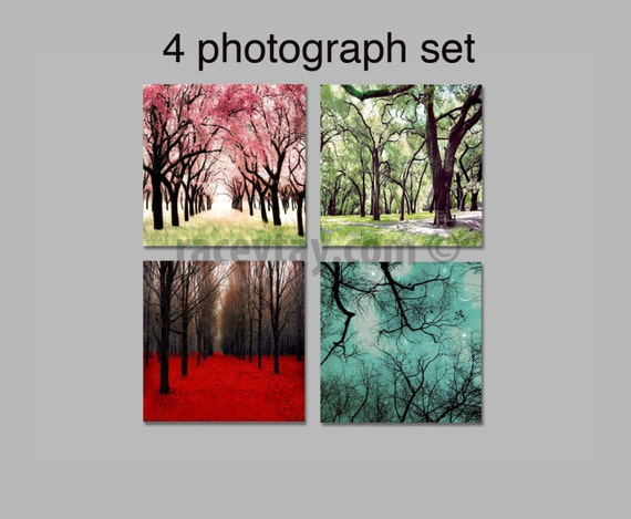 SALE, 4 Seasons Wall Art, Four Seasons Art Prints, 4 Seasons Tree Prints, Nature Photography, 4 Seasons Photo Set