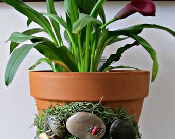 Fairy Gnome Garden Planter - Terra Cotta Pot with Fairy Door, Spanish Moss and Stones - Whimsical Indoor Plant Holder and Home Decor