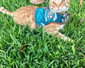 Fantastic Beasts Dog/Cat Harness