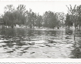 Flood overflowing the Lake Epic Flood Flooded Streets and Homes Real Photograph Vintage Photograph/Postcard Size Black and White