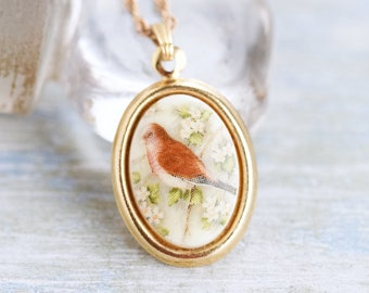 Bird Cameo Necklace - Robin Redbreast Oval Pendant on Golden Chain - Vintage Spring Jewelry