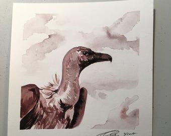 Original Watercolor Painting- Vulture