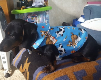 Doggies At Play in Blue Doggie Coat XS