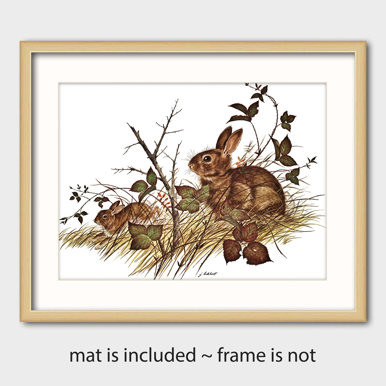 Rabbit Art Print W Mat Vintage Matted Animal Artwork
