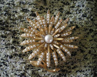 BSK Star Burst Daisy Brooch
