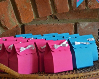 Pink & Blue Favor Bags: DIY Gender Reveal Favor Bags