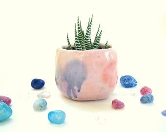 Pink Rainbow Succulent Planter, Flower Pot
