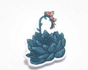 Succulent Acrylic Pin / Brooch