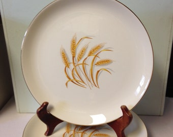 "Golden Wheat 9"" Vintage Dinner Plate/ Collectible/ 22K Gold Trim"