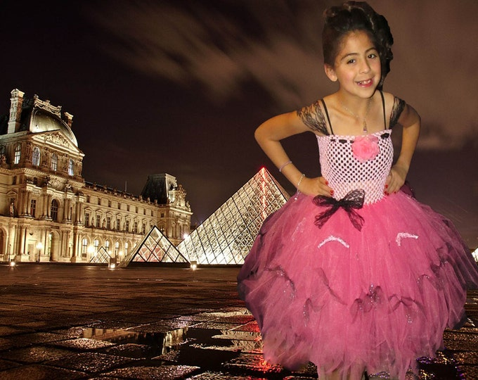 Bella Paris Tutu Dress (smaller sizes)