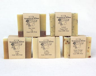 Homemade Soap Set - Goat Milk Soap - Soap Sampler - Small Soaps - All Natural Soap - Cold Process Soap - Essential Oil Soap - Organic Soap
