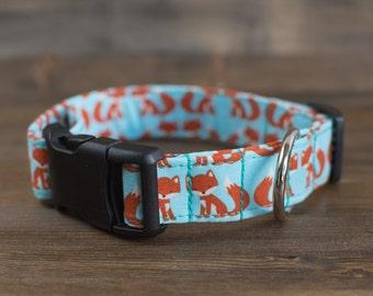 Fox Dog Collar, Fox, Blue Dog Collar, Orange Dog Collar, Dog Collar, Pet Accessories