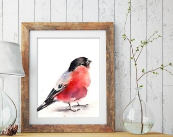 Bird Fine Art Print, Bullfinch Watercolor Print, Watercolor Painting, Bird Art, Wall Art