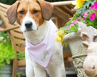 Pink Seersucker Pet Bandana    Pink White Seersucker    Southern Classic    Tie Dog Pupdana    Puppy Gift    Three