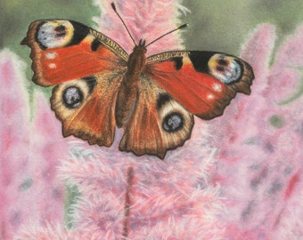 Nature artwork - butterfly - nature illustration - hyperrealistic illustration