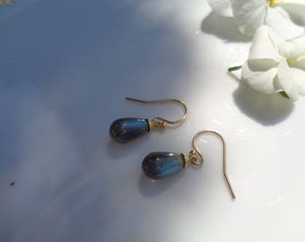 Small Silver earrings with Labradorite drops, beautiful colours!