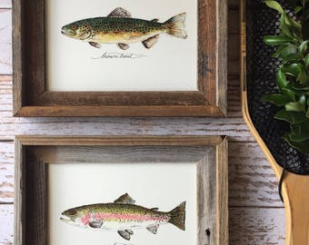 2 FRAMED Trout, Rainbow Trout and Brown Trout, 2 fish prints with frames, 8x10 or 11x14