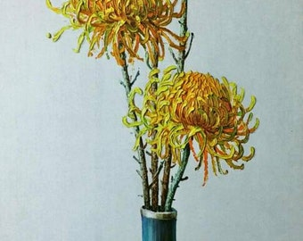 Vladimir Tretchikoff Still Life Flower Chrysanthemums Original Lithograph