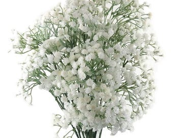 Artificial Gypsophila Fake Long Stem Flower Decor Fake Flowers TV / Film Decoration Props Table Toppers, Photography Props, Pack of 6